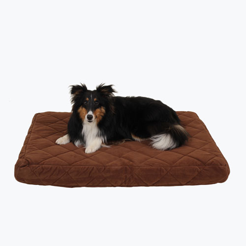 Carolina Pet Company Protector Pad Quilted Orthopedic Jamison Dog Bed, Chocolate, 30-in x 42-in