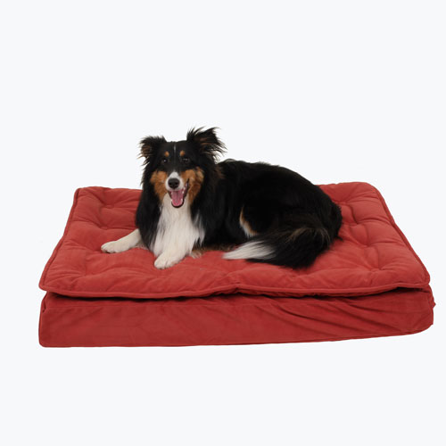 Carolina Pet Company Luxury Pillow Top Mattress Dog Bed, Red, 27-in x 36-in x 4-in