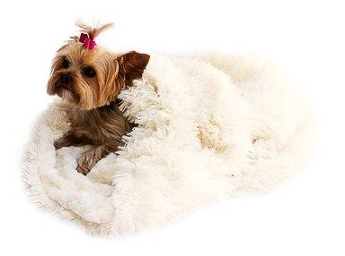 The Dog Squad Cozy Sak Plush Dog Bed, Powder Puff Ivory