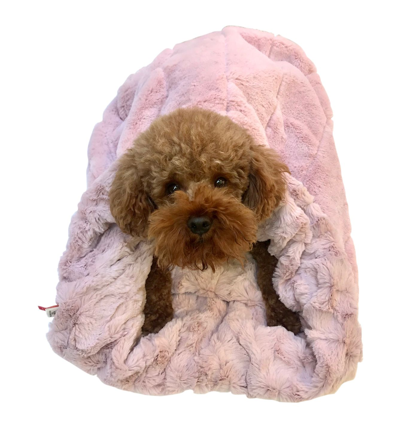 The Dog Squad Cozy Sak Plush Dog Bed, Koala & Bella Blush Pink