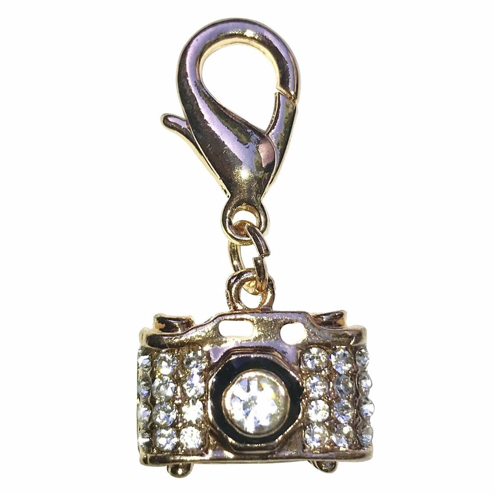 The Dog Squad Clip-On Collar Charms, Camera