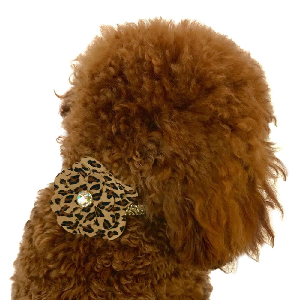 The Dog Squad Flower Collar Slider, Cheetah