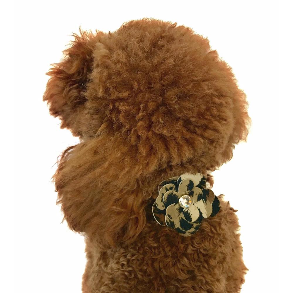 The Dog Squad Flower Collar Slider, Leopard