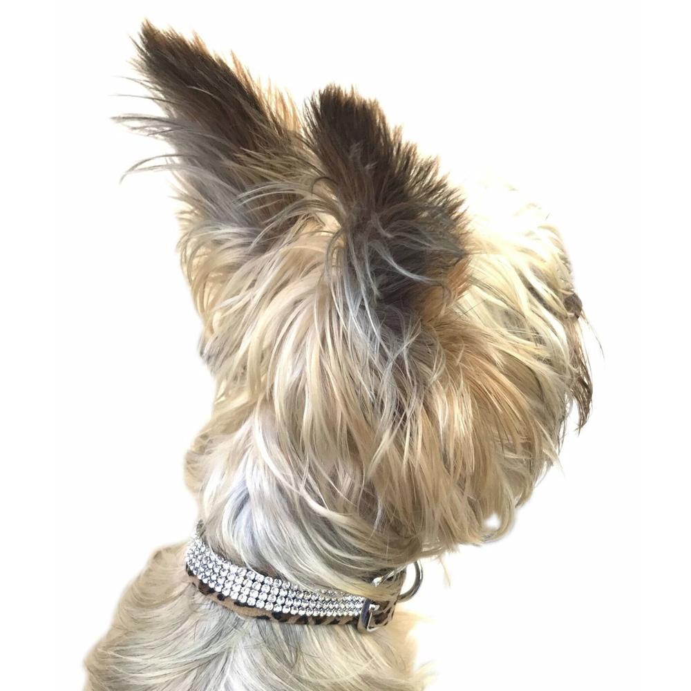 The Dog Squad Super Star Dog Collar with 4 Row Swarovski, Cheetah, X-Small, X-Small