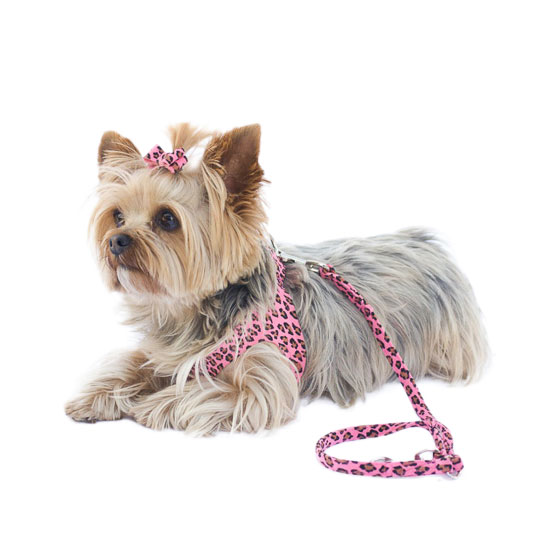 The Dog Squad Starlet Dog Harness, Pink Leopard, X-Small