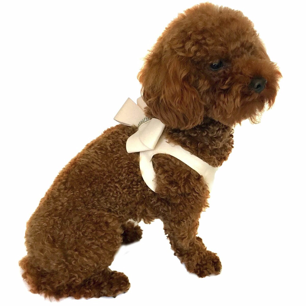 The Dog Squad Starlet Step In Bow Dog Harness, Blush, XX-Small