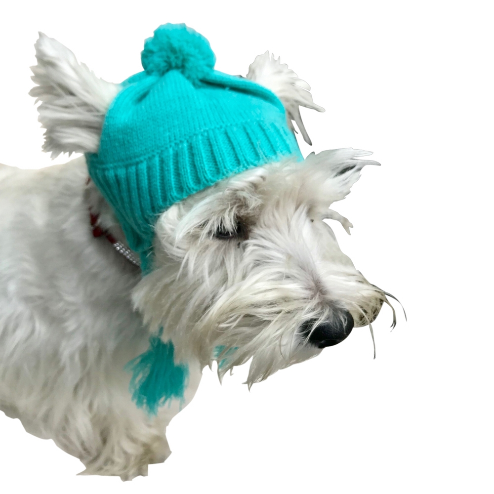 The Dog Squad Scottish Cable Knit Hat, Turquoise, XX-Small/X-Small