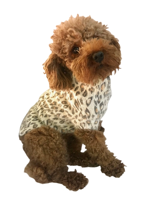 The Dog Squad Sweater, Snow Leopard, Small