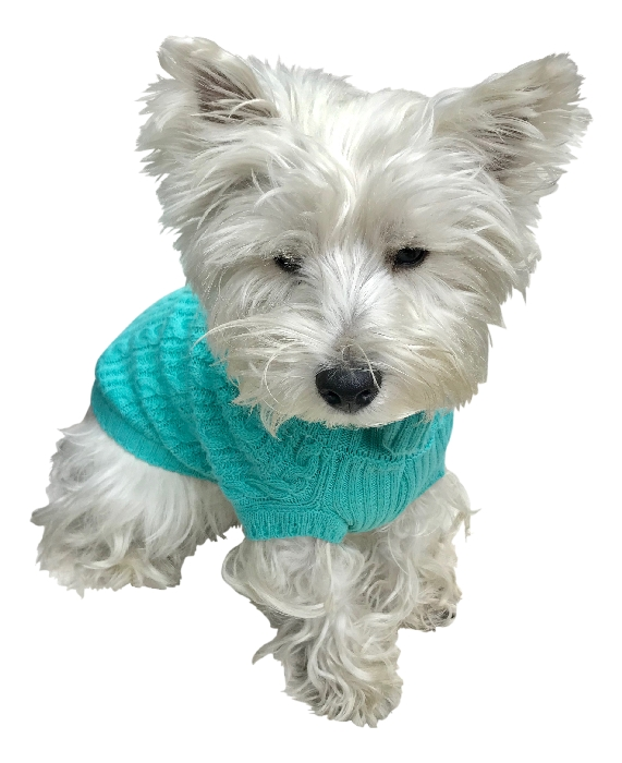 The Dog Squad Scottish Cable Knit Sweater, Turquoise, Small
