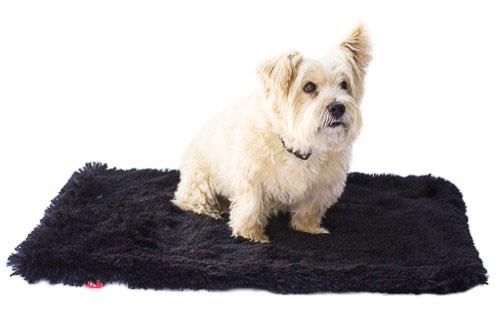 The Dog Squad Minkie Binkie Blanket, Powder Puff Black, Small, Small (20-in x 30-in)