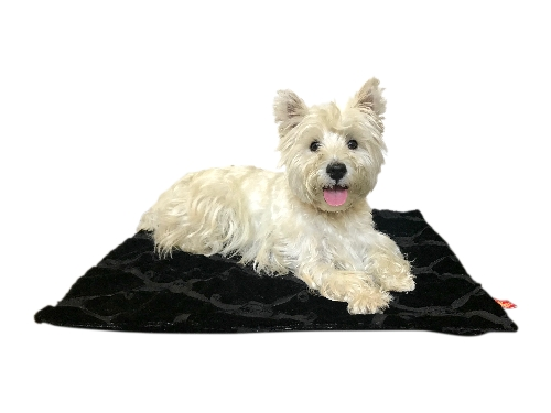 The Dog Squad Minkie Binkie Blanket, Black Roses, 16.5-in x 16.5-in