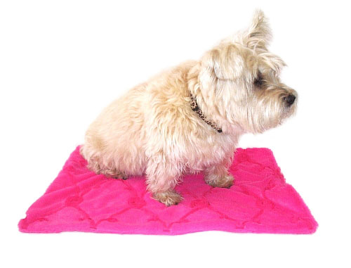 The Dog Squad Minkie Binkie Blanket, Hot Pink Roses, 20-in x 30-in