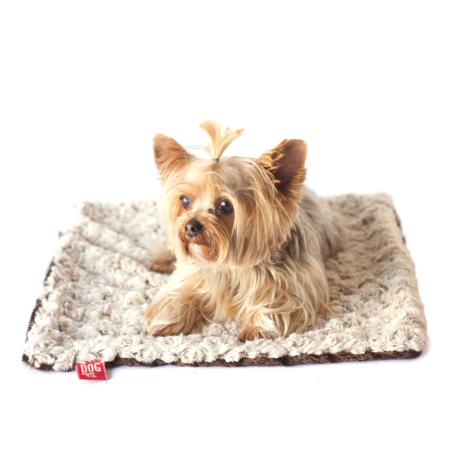 The Dog Squad Minkie Binkie Blanket, Ivory & Brown Two Tone Rosebud, 20-in x 30-in