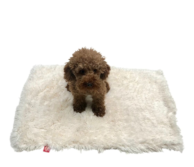 The Dog Squad Minkie Binkie Blanket, Powder Puff Ivory