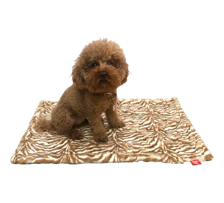 The Dog Squad Blanket, Zebra Cappuccino, Small
