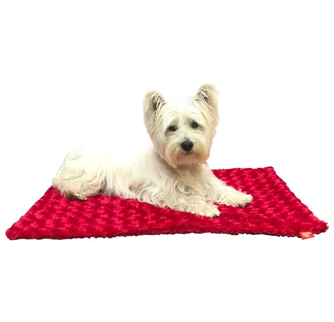 The Dog Squad Blanket, Rosebud Red, Small