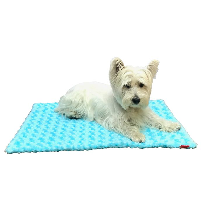 The Dog Squad Blanket, Rosebud Aqua, Small