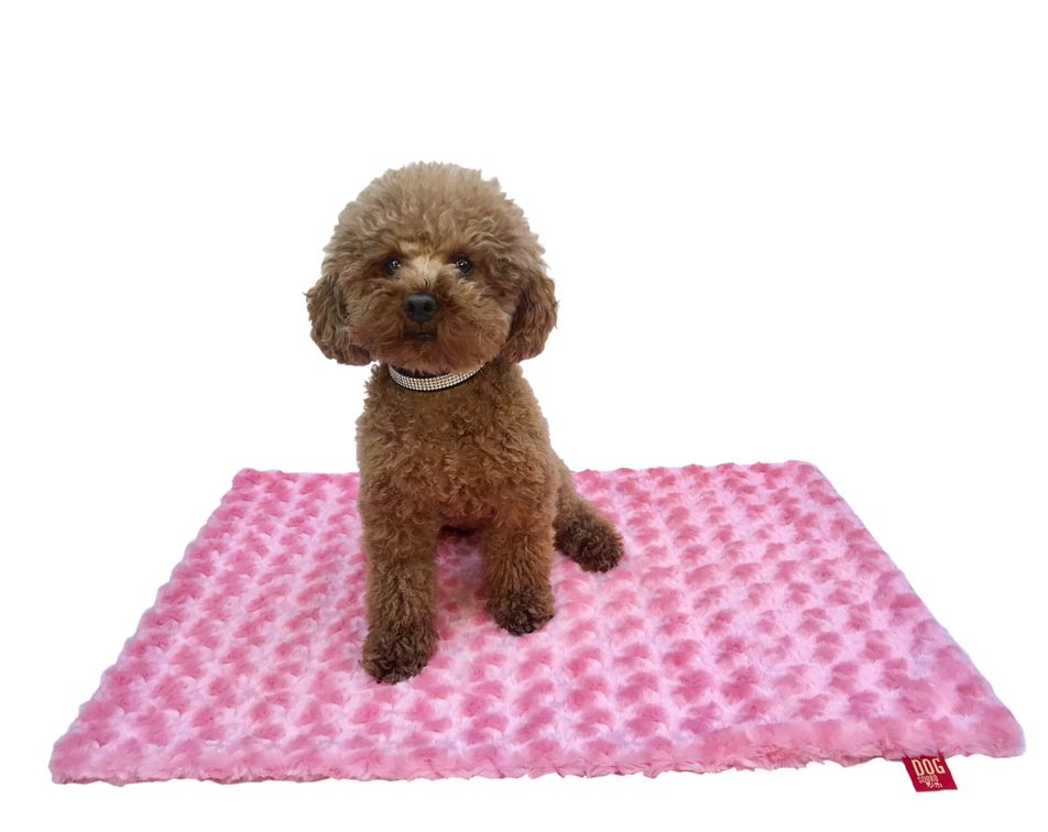The Dog Squad Blanket, Rosebud Coral, Small