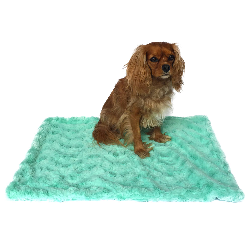 The Dog Squad Minkie Binkie Blanket, Bella Seafoam, Square