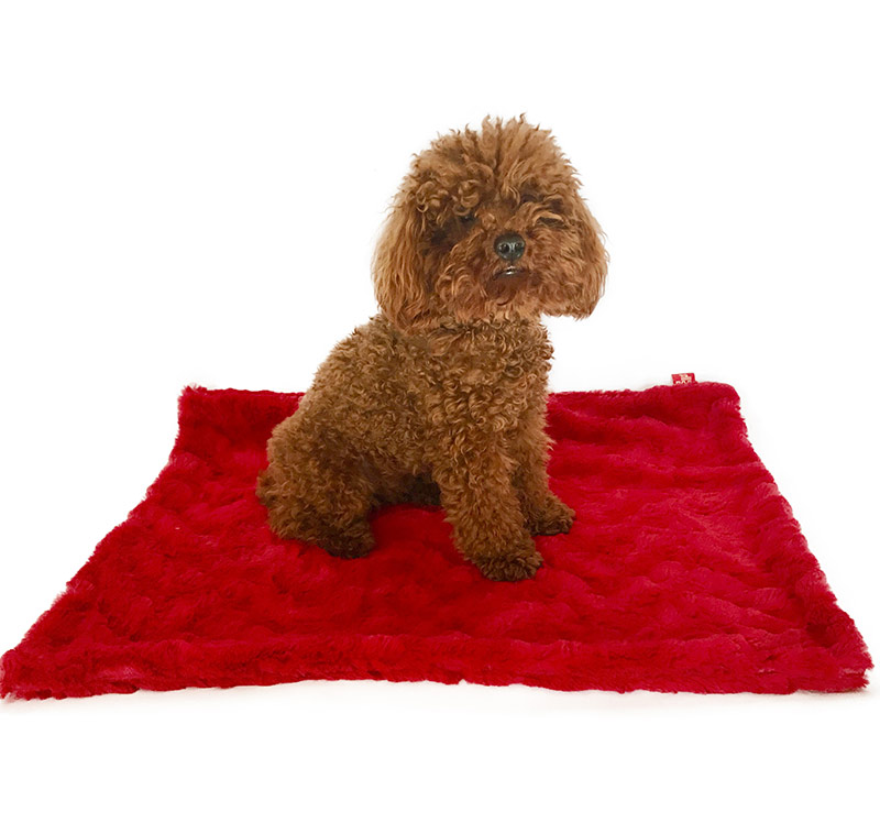 The Dog Squad Minkie Binkie Blanket, Bella Red, Small