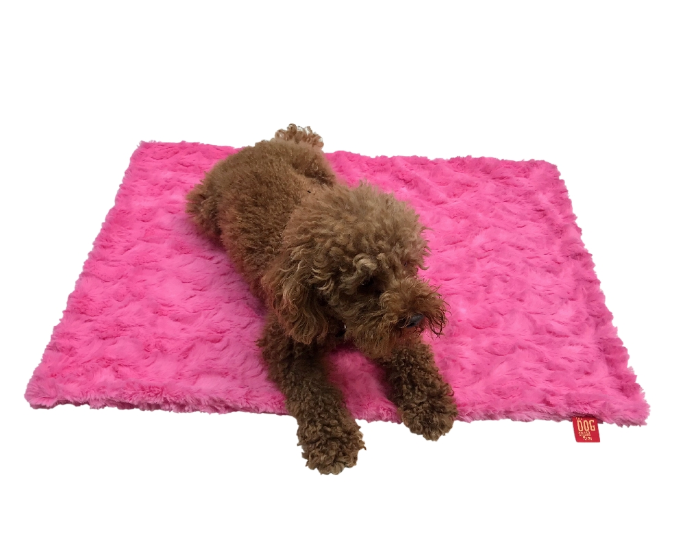 The Dog Squad Minkie Binkie Blanket, Bella Hot Pink, Small