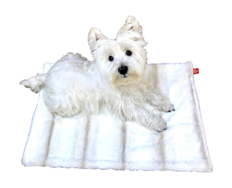 The Dog Squad Blanket, Biscotti, Small