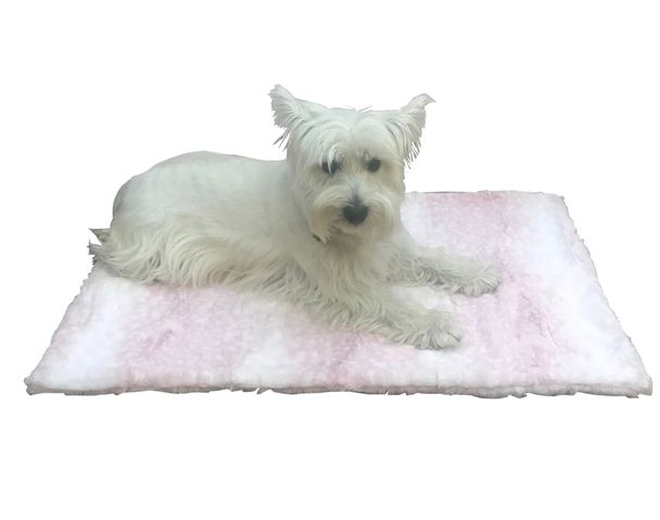 The Dog Squad Blanket, Rosewater, Square