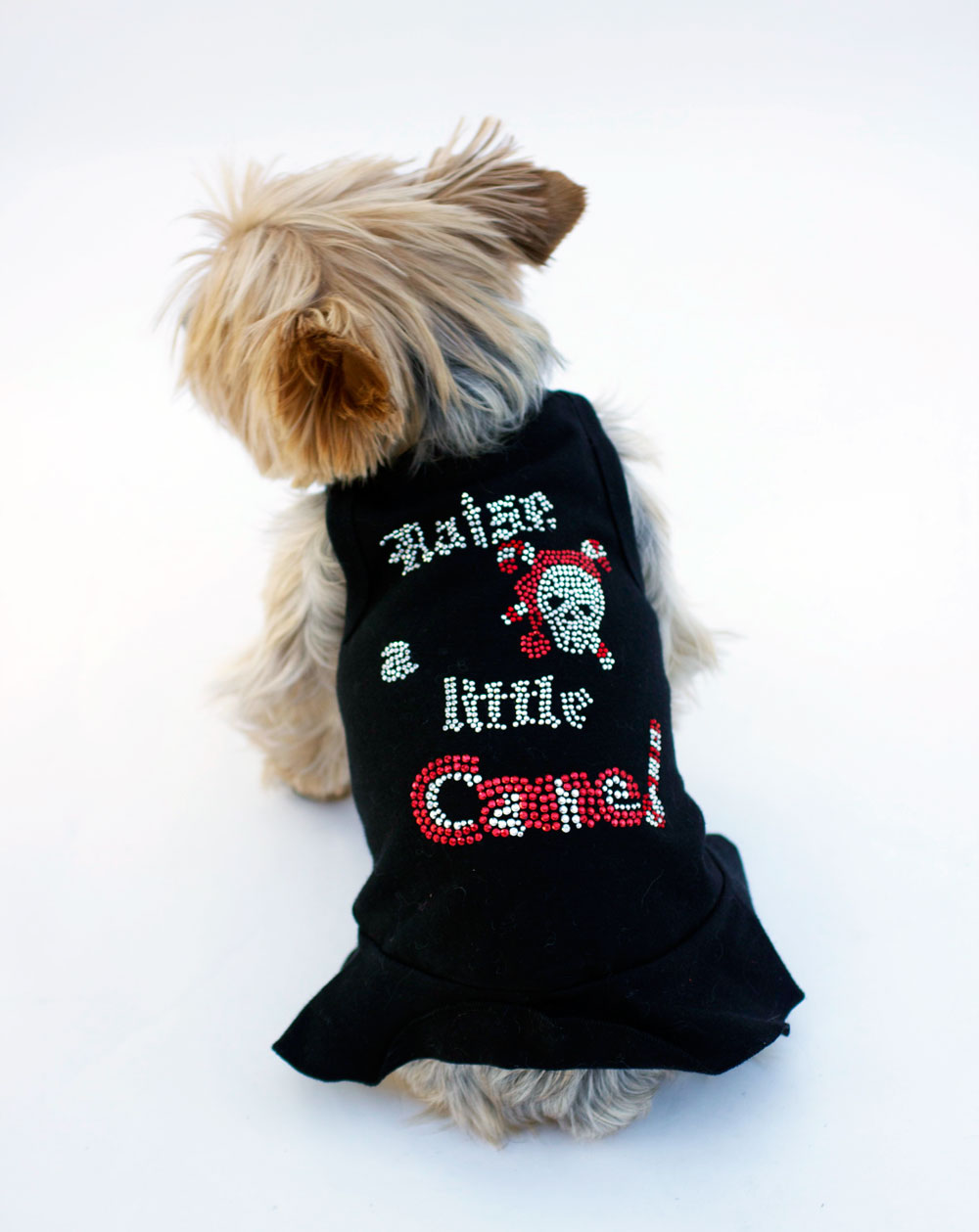 The Dog Squad Tank Dress, Christmas Raise a Little Cane Black, Small