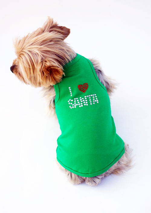 The Dog Squad Tank Dress, Christmas I Love Santa Green, Medium