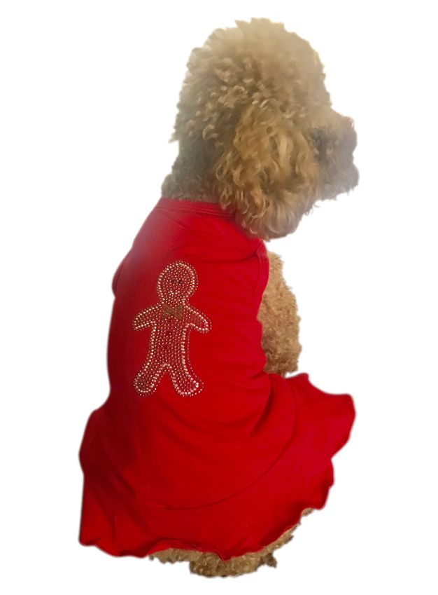 The Dog Squad Tank Dress, Christmas Gingerbread Red, X-Small