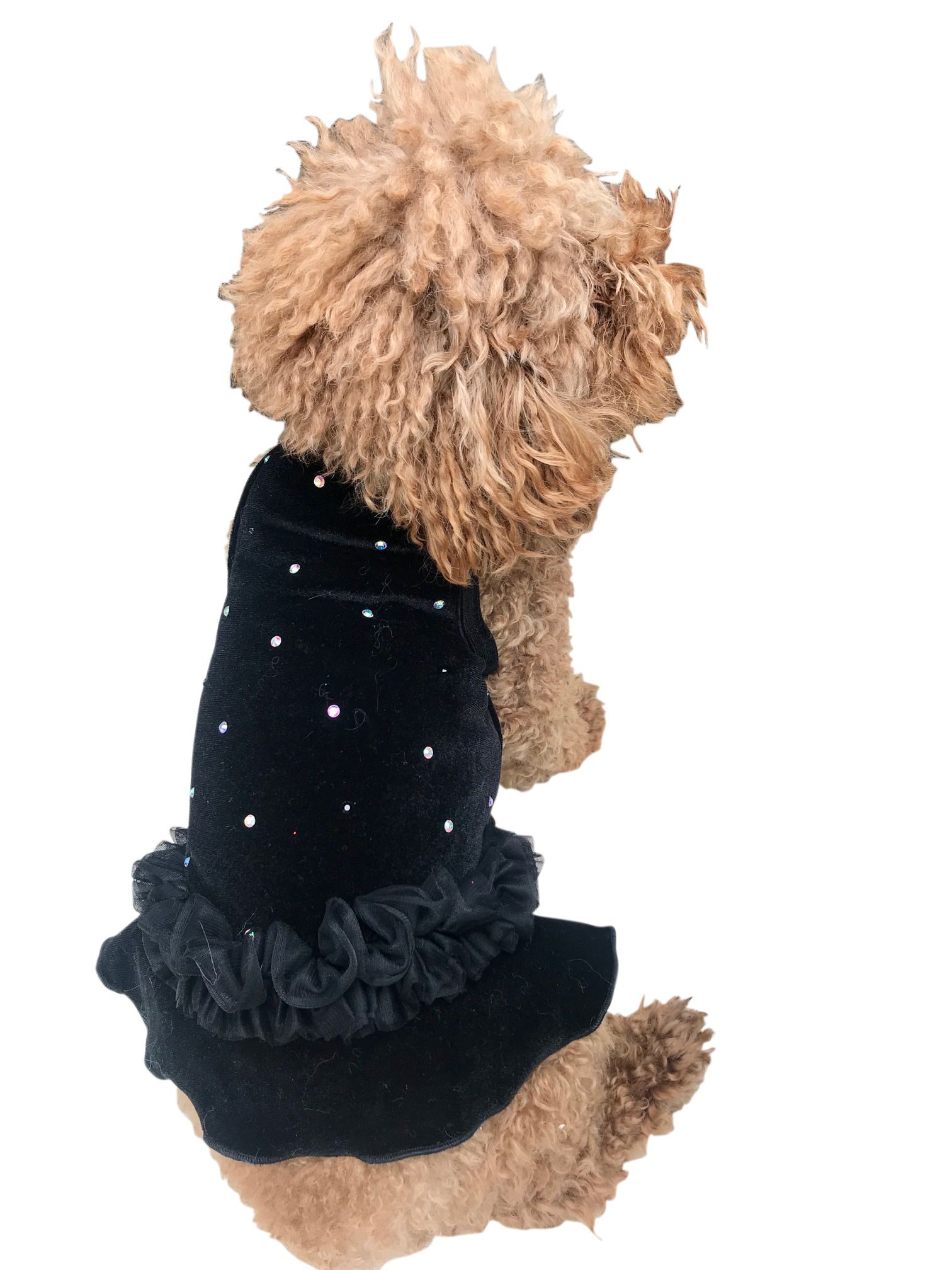 The Dog Squad Tutu Dress, Black Velvet Twinkle, Small