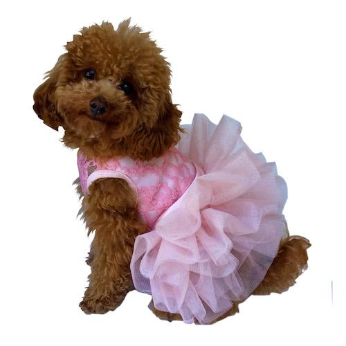 The Dog Squad Fufu Tutu Dog Dress, Pink, Medium