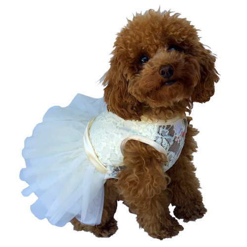 The Dog Squad Fufu Tutu Dog Dress, Ivory, Small
