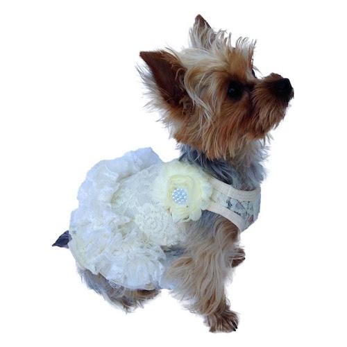 The Dog Squad Tutu Dress, Ivory Garden Party, Large
