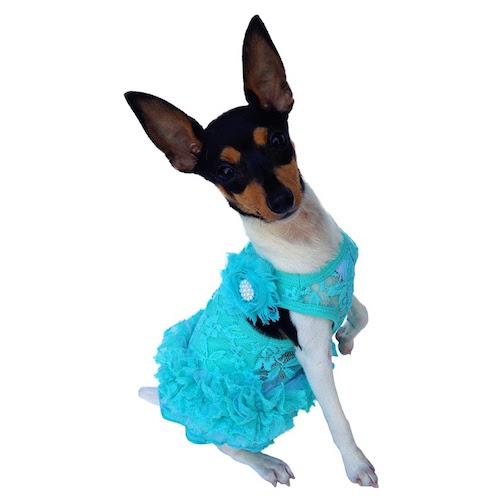 The Dog Squad Tutu Dress, Seafoam Garden Party, Large