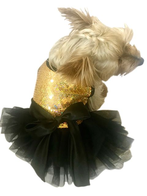 The Dog Squad Fufu Tutu Dog Dress, Gold Stardust, X-Small