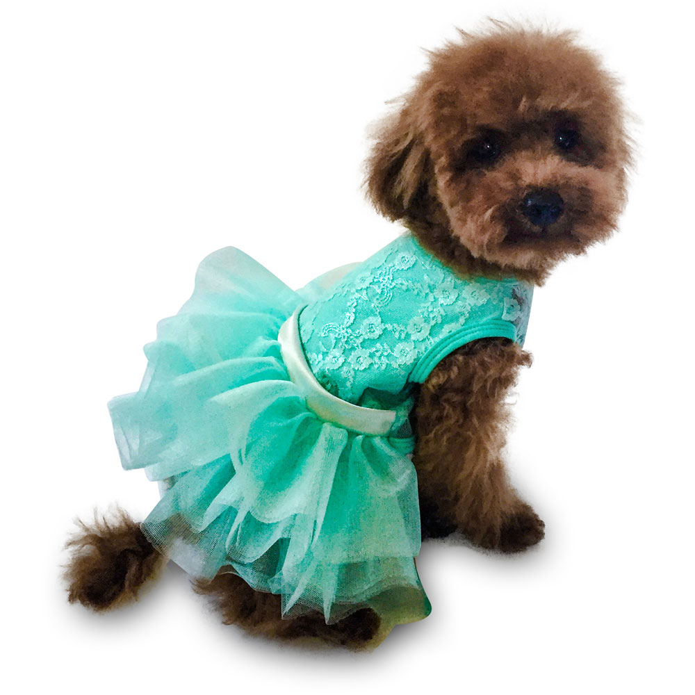 The Dog Squad Fufu Tutu Dog Dress, Seafoam Iridescent Lace, Large