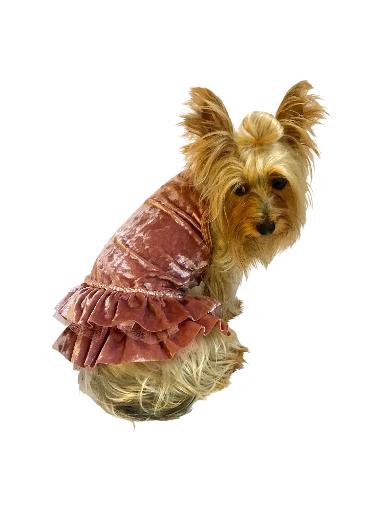 The Dog Squad Metallic Velvet Dress, Crushin' on YOU Rosewater, Small