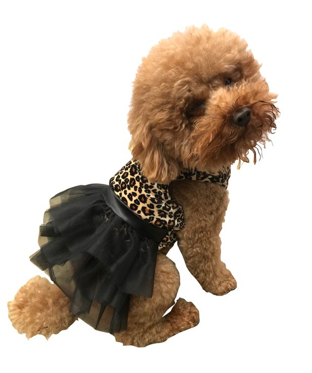 The Dog Squad Fufu Tutu Dog Dress, Retro leopard velvet, X-Small