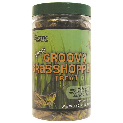 Exotic Nutrition Dried Groovy Grasshoppers  Small Animal Treats, 40-g
