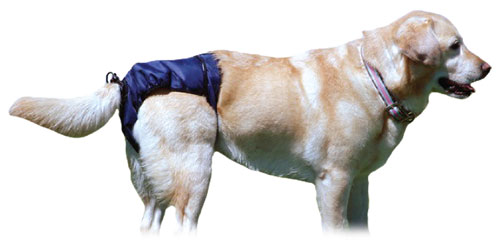 KVP SnuggEase Washable Protective Dog Diapers, Large