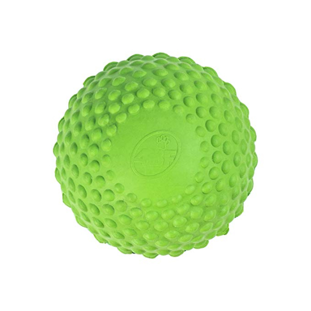 4BF Natural Rubber Bumpy Ball Dog Toy, Green, Medium