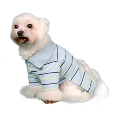 Pooch Outfitters Polo Shirt, Owen, XX-Small
