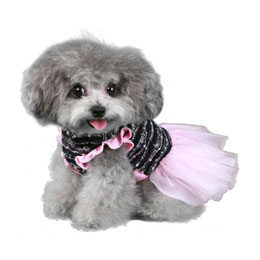 Pooch Outfitters Party Dress, Caroline, X-Small