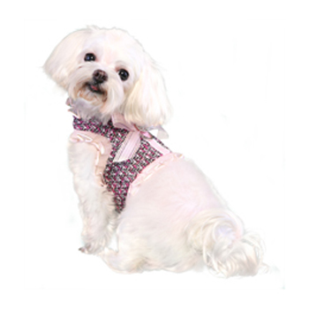 Pooch Outfitters Harness Top, Addison, X-Small