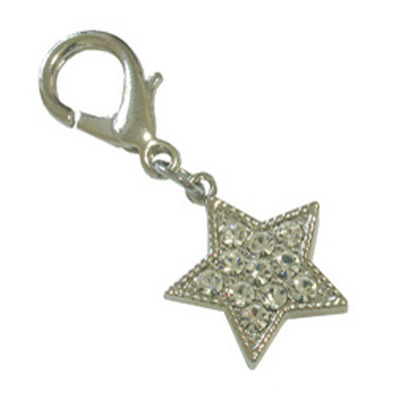 Pooch Outfitters Collar Charm, Starlet