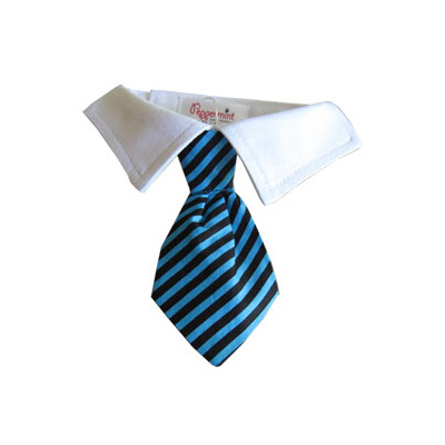 Pooch Outfitters Shirt Collar with Detachable Necktie, Chase, XX-Small/X-Small