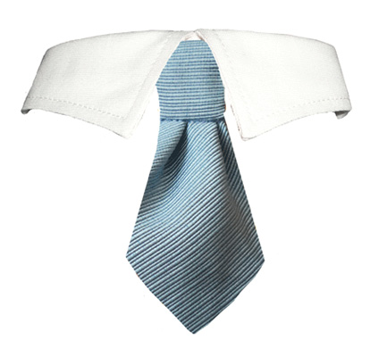Pooch Outfitters Shirt Collar with Detachable Necktie, Mason, XX-Small/X-Small