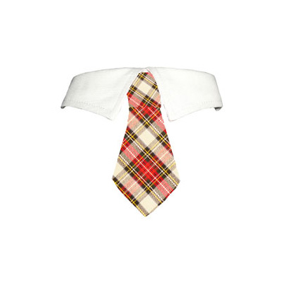 Pooch Outfitters Shirt Collar with Detachable Necktie, Carter, 3X-Large