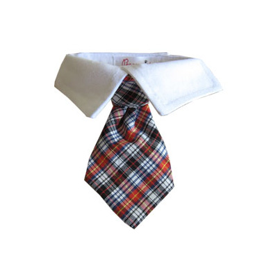Pooch Outfitters Shirt Collar with Detachable Necktie, Nicholas, XX-Small/X-Small